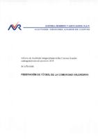 Cuentas Anuales FFCV
