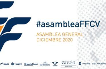 banner Asamblea FFCV